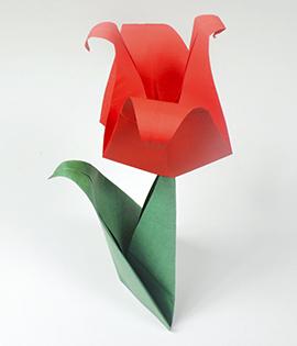 Passo a Passo – Tulipa de Origami
